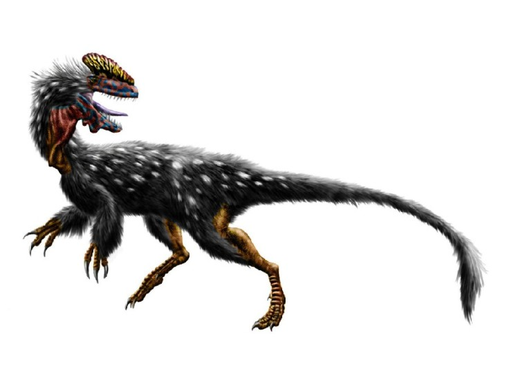 guanlong_wucaii_by_durbed-d4we433_bf67