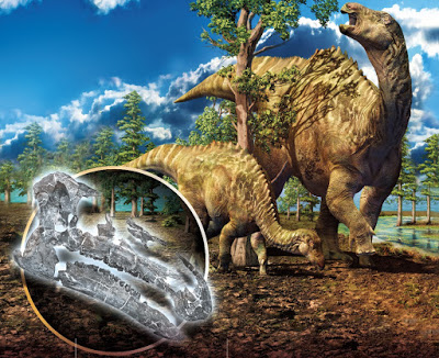 Bayannurosaurus_perfectus-novataax_2018-Xu_Tan_Gao_Bao_Yin_et-al__science-bulletin-16120723
