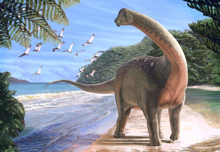 Mansourasaurus