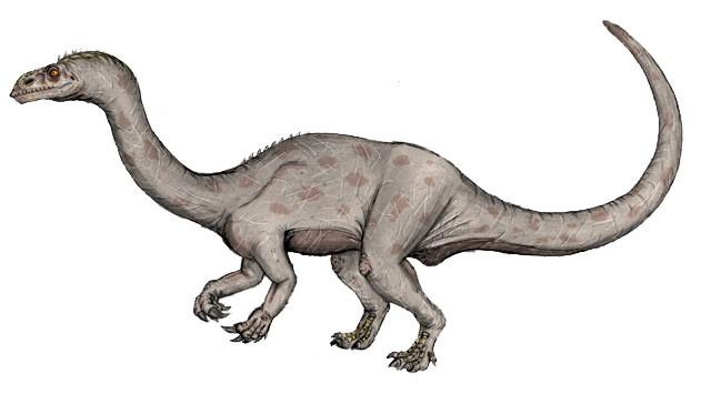 Yizhousaurus-Ezequiel-Vera_ac2e