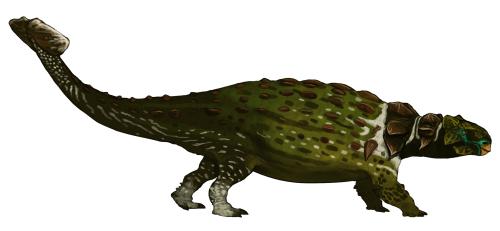 anondontosaurus