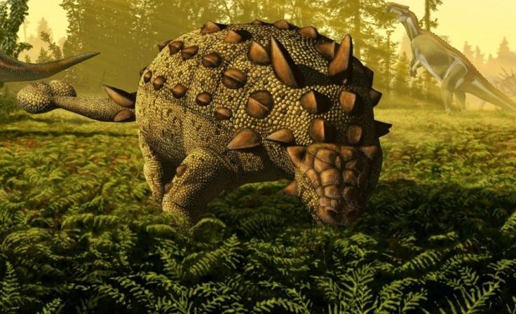 csotonyi-niche-ankylosaur